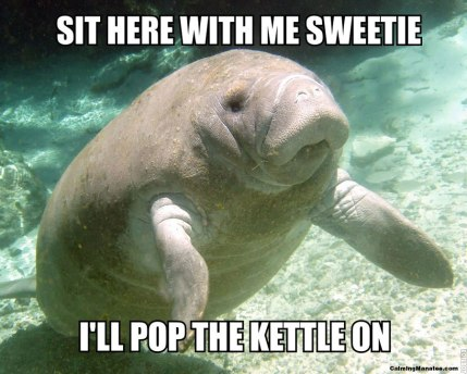 Credit: Calming Manatee (Source: http://calmingmanatee.com/25)