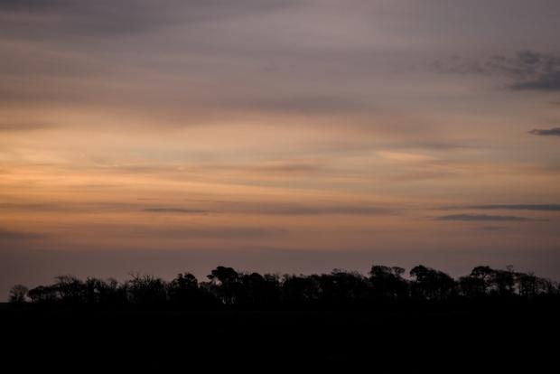 Dawn over Mersehead