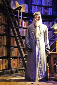 dumbledorme-as-me