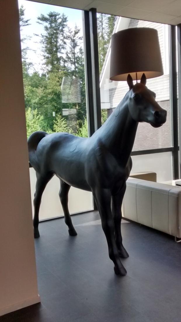 Fig 4 Woudschoten Horse.jpg