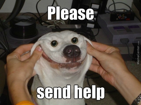 please-send-help_o_3987259