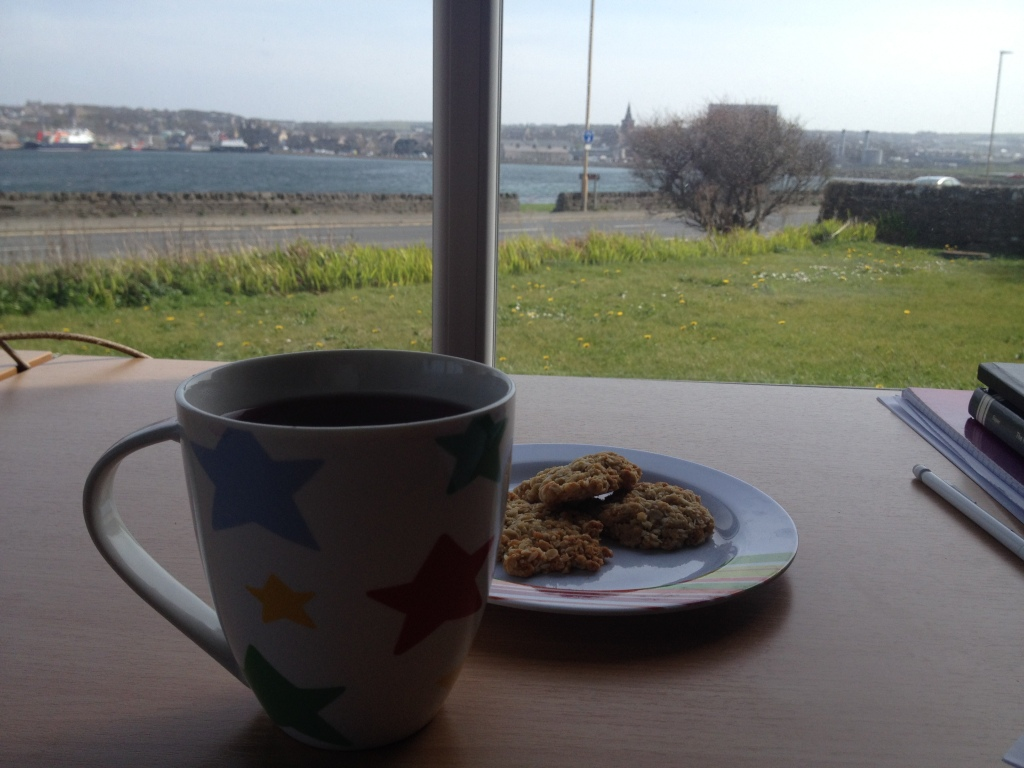Cup of coffee and plate of biscuits looking out at a view of grass and sea.
