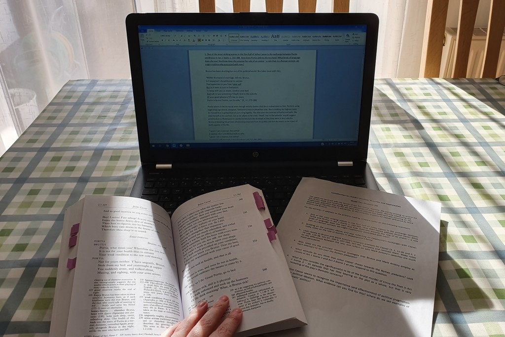 Seminar prep. One book lies open in front of a laptop and next to a printed out sheet of a lesson plan.
